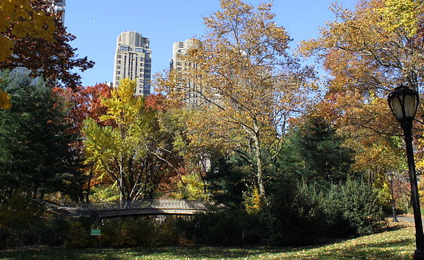 New York City For the Nature Lover